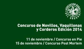 CONCURSO-DE-NOVILLOS-2014-590x330px