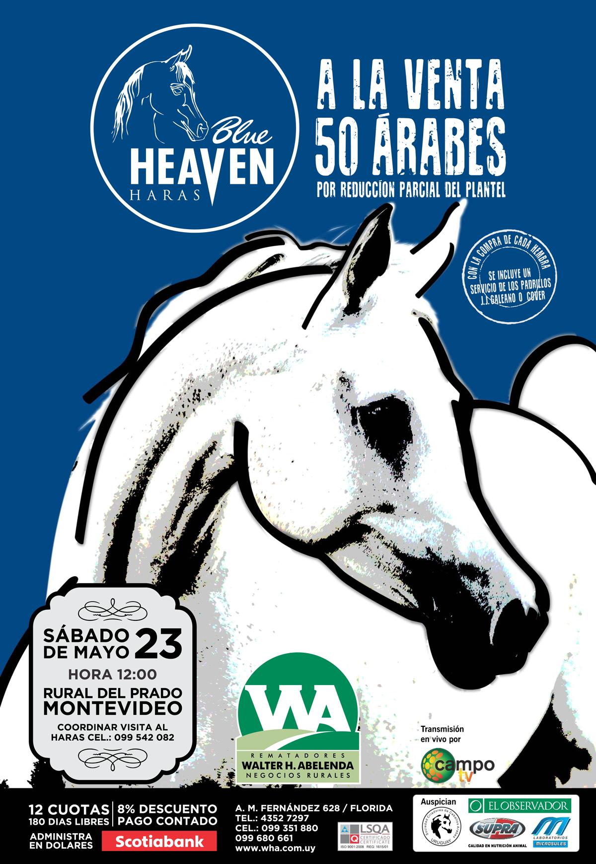 afiche-remate-blue-heaven-01-3